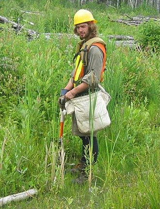 """Tree planting - A """"treeplanter"""" in northern Ontario."""