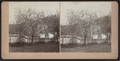 Trees in bloom, by DeMott, S., fl. 1880-1899.png