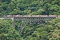 Trem cargueiro na travessia da Ponte São João, com visão aproximada do próximo viaduto.jpg
