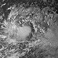 Tropical Storm 18W 2009 peak intensity.jpg