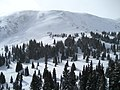 Tucker Mountain at Copper Mountain Resort.jpg