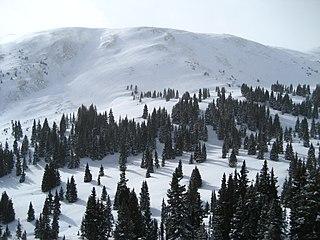 Copper Mountain, Colorado Census-designated place in Colorado, US