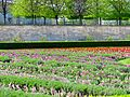 Tuileries Garden, April 2015 002.jpg