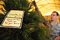 U.S. Airmen deployed to the 380th Air Expeditionary Wing decorate a Christmas tree Nov. 24, 2013, at an undisclosed location in Southwest Asia 131124-F-XR500-063.jpg