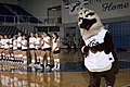UNF volleyball and Ozzie.jpg