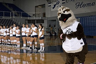 North Florida Ospreys - Volleyball team with Ozzie in UNF Arena