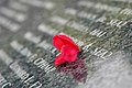US Navy 040615-N-6914M-095 A single red flower on a memorial commemorates the 60th Anniversary celebration of Saipan and Tinian from Japanese forces during WWII.jpg