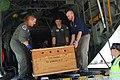 US Navy 100128-N-5586R-036 Sailors transport sick sea turtles to the San Diego Sea World.jpg