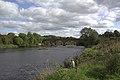 Uddingston, Haughhead Bridge (K5IM1219 v1-1).jpg