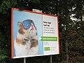 Umweltfreundlicher Hamster - geo.hlipp.de - 14292.jpg