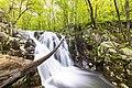 Upper Rose River Falls (34512959652).jpg