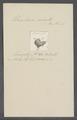 Urceolaria ocreata - - Print - Iconographia Zoologica - Special Collections University of Amsterdam - UBAINV0274 113 21 0018.tif