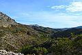 Vall del barranc de la font d'Aixa.JPG