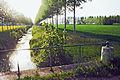 Vaudes FR10 Hozain IMG 8909.jpg
