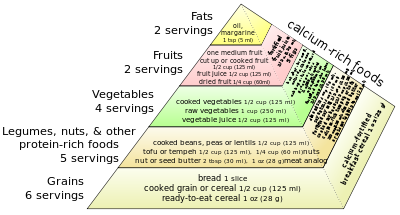 vegan food pyramid adapted from recommendation...