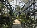 View in greenhouse of Innoshima Flower Center 4.jpg