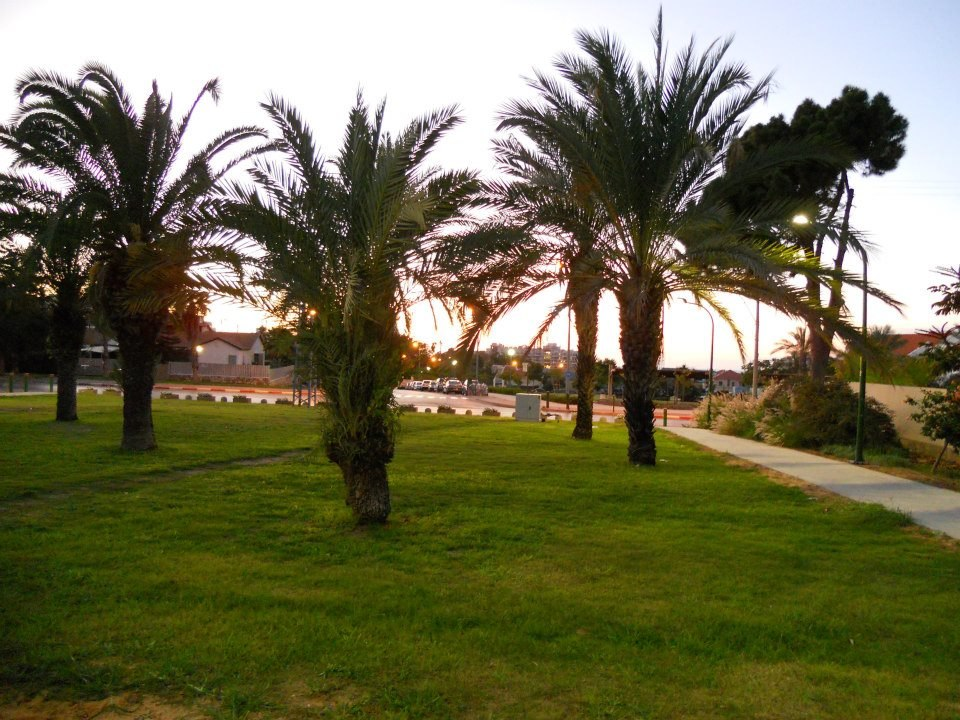 View of the park in Afridar, Ashqelon, Israel