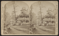 View on Lake Avenue, at Chautauqua, by Walker, L. E., 1826-1916.png