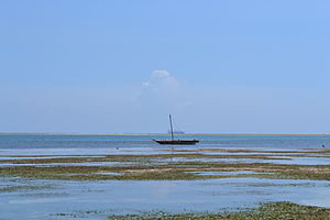 View out to sea on Nyali Beach next to the Voyager Beach Resort during low tide and still conditions in Mombasa, Kenya 2.jpg