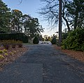 View toward Perennial Garden NBG.jpg