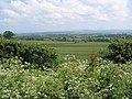 View towards the Malvern Hills from Bodenham Bank - geograph.org.uk - 451981.jpg