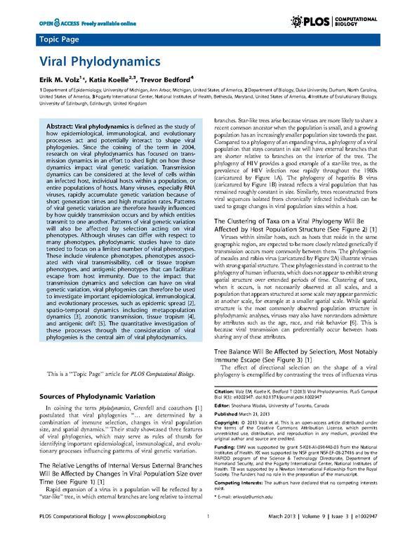 types of group dynamics pdf