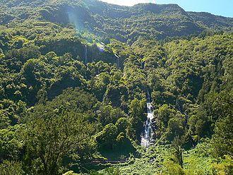 Bridal Veil Falls (Salazie) - Image: Voile de la Mariée Salazie