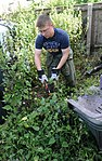 Volunteers help clear garden for local disabled homeowner 120825-F-UA873-255.jpg