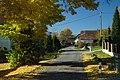 Vrančice, stromy II.jpg