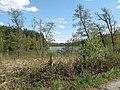 Vyžlovský rybník (038).jpg
