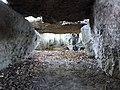 Wéris-dolmen d'Oppagne (5).jpg
