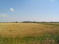 Wöhrden Skyline.JPG