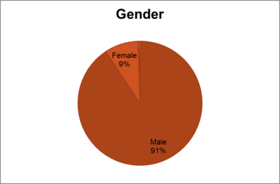 WP April 2011, Editor Survey, 91percent editors are male.png