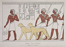 A hieroglyph depicting two leashed cheetahs
