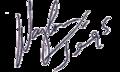 Waylon Jennings Signature.png