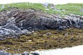 Welle im Gneis an der Westküste von Great Bernera.jpg