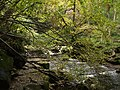 West Beck gorge - geograph.org.uk - 155298.jpg
