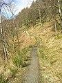 West Highland Way - geograph.org.uk - 152095.jpg