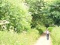 West Warren - geograph.org.uk - 856646.jpg