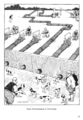 William Heath Robinson Inventions - Page 045.png