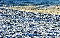 Winter field - Flickr - Stiller Beobachter.jpg