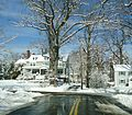 Winter scene Summit NJ with trees and road and houses.JPG