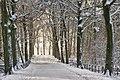 Winter will return .... (8437606641).jpg