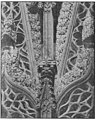 Wood Carvings in English Churches II-041R.jpg