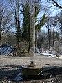 Wuppertal Lüntenbecker Weg 0136.jpg
