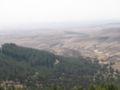 Yatir Forest, Israel no.1.jpg