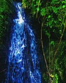 """MWENGEI"" A water stream, found in kiambu county, central Kenya.jpg"