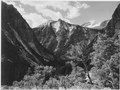 """Paradise Valley, Kings River Canyon (Proposed as a national park),"" California, 1936., ca. 1936 - NARA - 519937.tif"