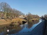 's-Hertogenbosch, de Dommel vanaf de Molenberg foto18 2016-12-04 11.41.jpg