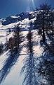 ^ 6 very cold shadows - panoramio.jpg